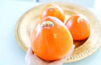 輝く富士柿